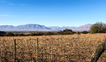 The view from Las Nubes vineyard.