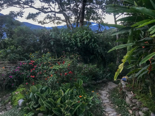 Walking path through the garden at Sol y Luna